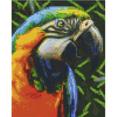 Pixel Vorlage Papagei