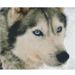 Pixel Vorlage Husky