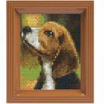 Bild mit Rahmen Beagle