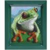 Pixelhobby Bild Frosch