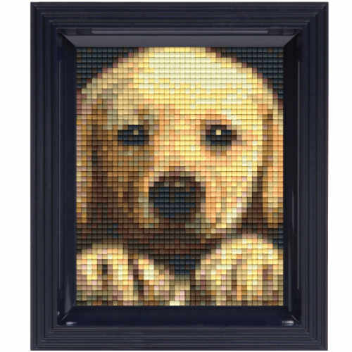 Pixeln