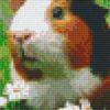Pixelhobby Vorlage Meerschweinchen