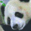 Pixelhobby Vorlage Panda