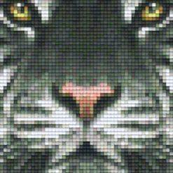 Pixelhobby Vorlage Tiger