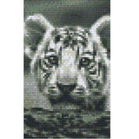 Gratis Pixel Vorlage Tiger